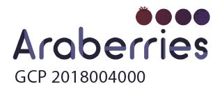 Araberries